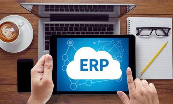 专业的ERP软件公司都不提供试用版?